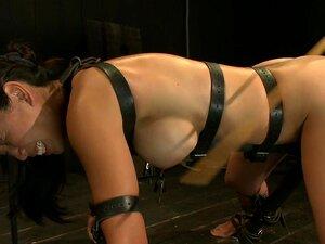 Studier av Tia, Tia Ling returnerer. Hun vet boret, får vi direkte til virksomheten. Armene er lenket tilbake og bena bundet i metal. Hennes stramme kroppen tar hardt, tunge blåser i flogger. Brystvorte tuggers trekk intenst på sensitive brystvorter. Hun